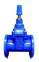 Flanged End NRS Resilient Seated Gate Valves-DIN3352 F5