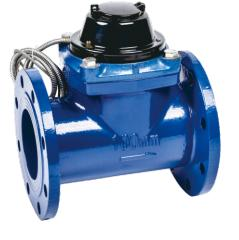 Removable Horizontal Woltman Water Meter